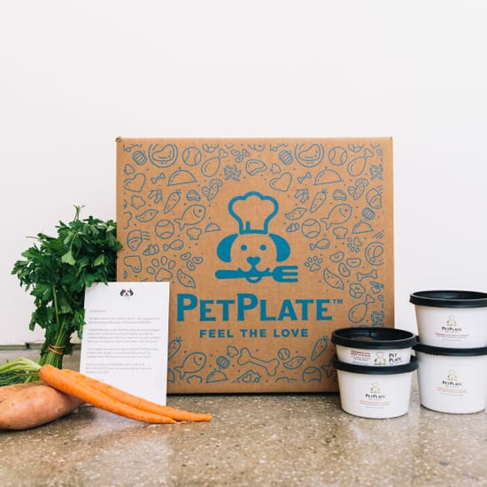 PetPlate Pet Food Delivery Review