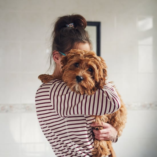 How My Dogs Help Me Manage My Anxiety Amid COVID-19