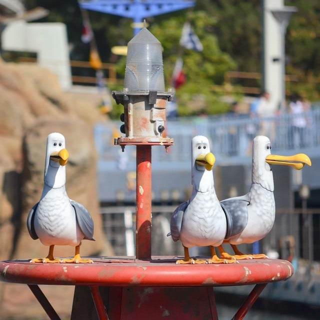 the finding nemo seagulls that yell mine mine mine all day best
