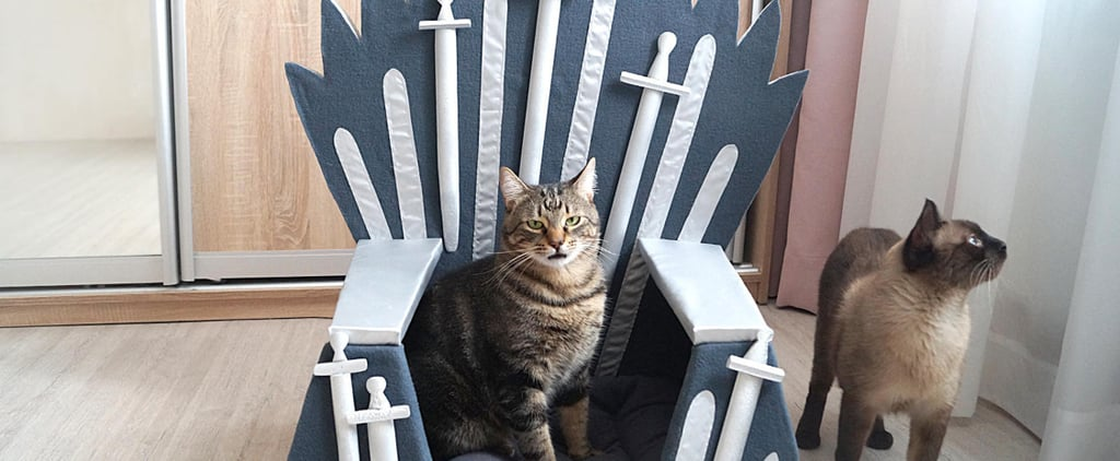 Game of Thrones Bed For Pets