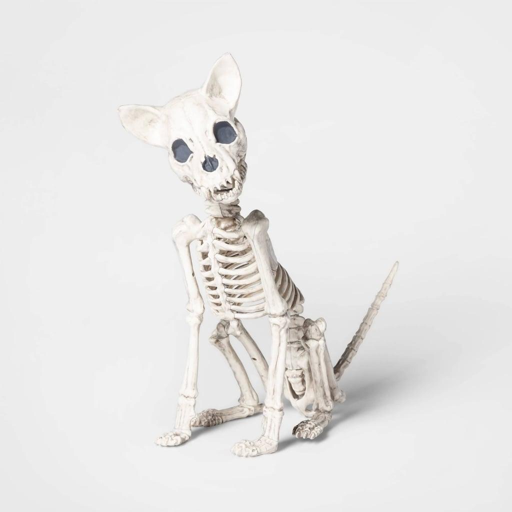 Chihuahua Skeleton