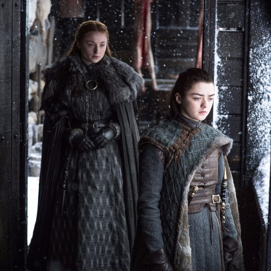 Are Sansa and Arya Working Together on Game of Thrones?