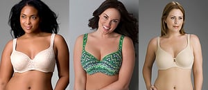 New Lane Bryant Plus-Size Lingerie Ad Rejected by TV Networks
