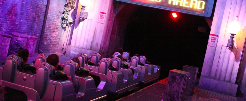 Best Roller Coasters at Disney Parks