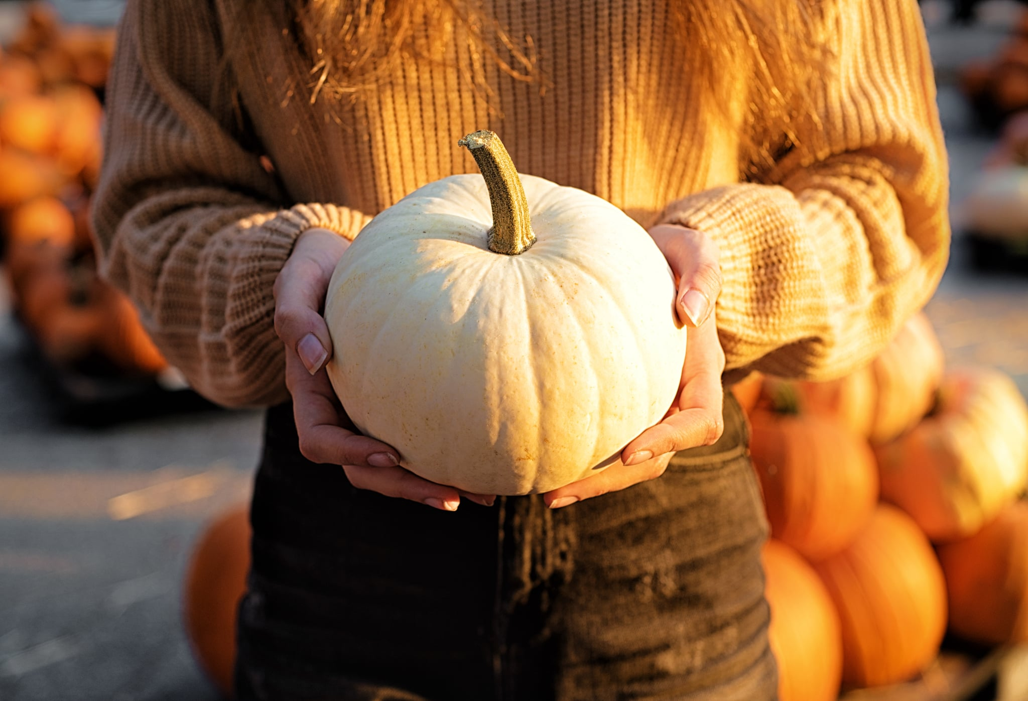 Young woman holding a white pumpkin on a pumpkin patch