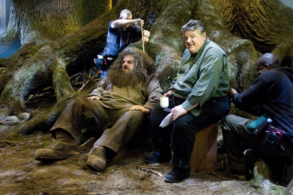 There's something so wrong about seeing Robbie and Hagrid sitting next to each other!