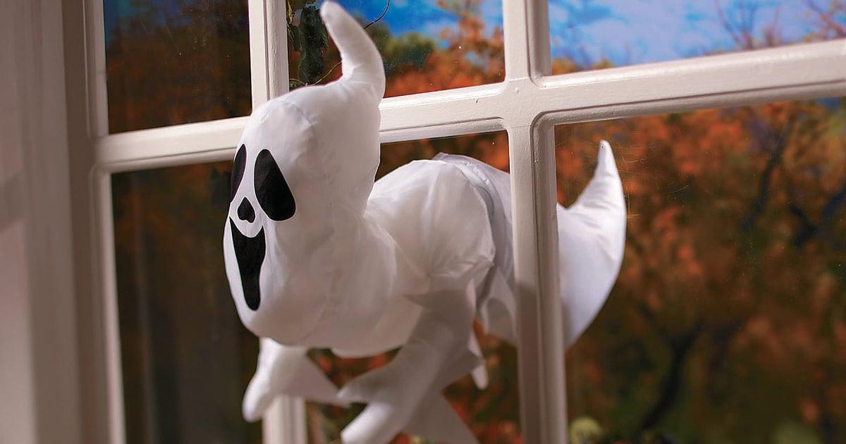 Halloween Decor & More For A Safe & Socially Distanced Celebration