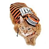 Pet Prisoner Dog Costume