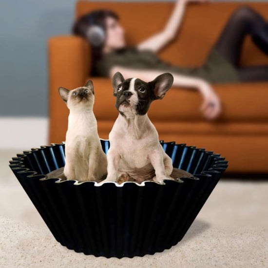 Sweet Cake Cupcake Dog and Cat Bed