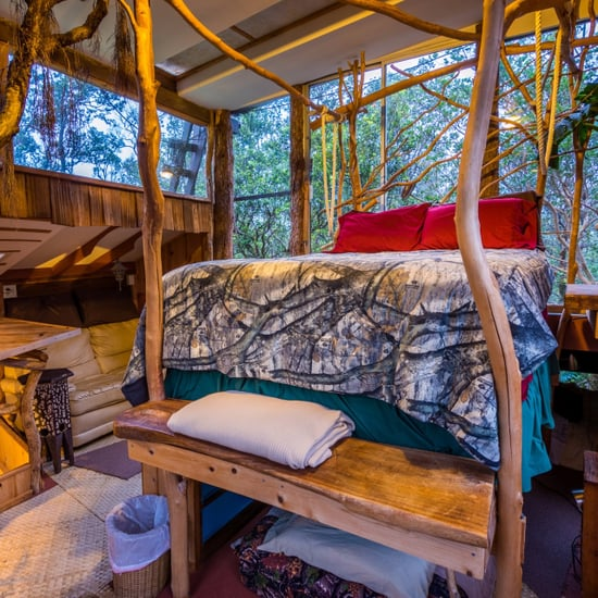 Volcano Tree House Rental in Hawaii
