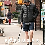 Hugh Jackman took his adorable dog on a walk in NYC on Saturday.