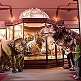 Natural History Museum of Los Angeles County — Los Angeles