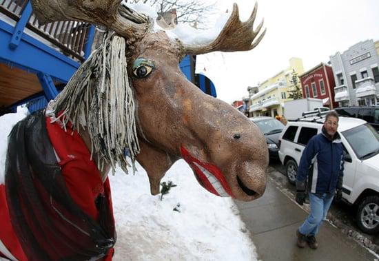 Live From Park City, It's the Sundance Film Festival!