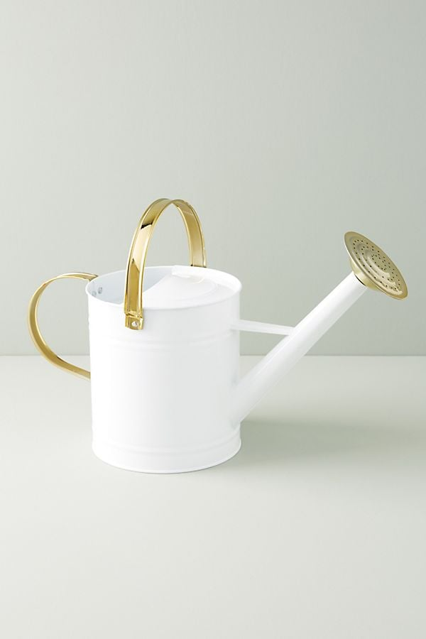 Charlotte Watering Can