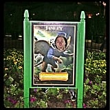 Zach Braff channeled his character in Oz the Great and Powerful while at Disney World. Source: Twitter user zachbraff