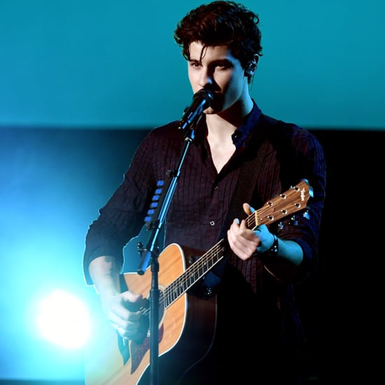 Shawn Mendes's American Music Awards Performance 2017