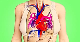 A Month Before a Heart Attack Your Body Will Warn You With These 8 Signals
