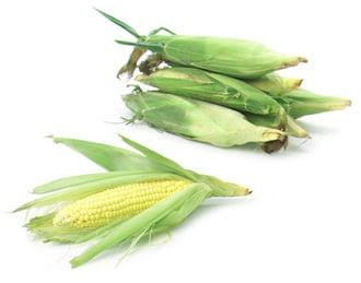 Expert Corn Pudding