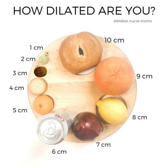 Nurse's Dilation Chart Using Food Items