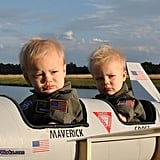 Maverick and Goose