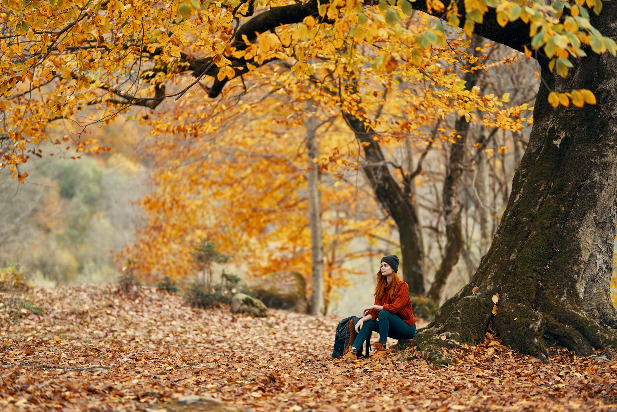 A woman on nature walks in the autumn forest and rests near a large tree