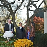 Thanksgiving Turkey Pardon