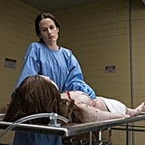 Elizabeth Reaser as Shirley