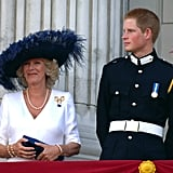 Camilla and Harry watched the flypast from the Buckingham Palace balcony during National Commemoration Day in July 2005.