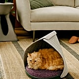 Cat Person Canopy Bed