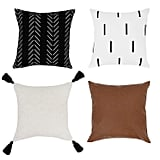 Throw Pillow Covers and Cases