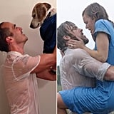 Dog-Filled Movie Moments