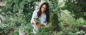 A First Look at Chip and Joanna Gaines's New Magazine