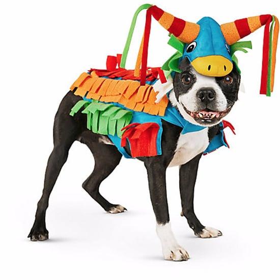 Petco Dog Halloween Costumes 2016