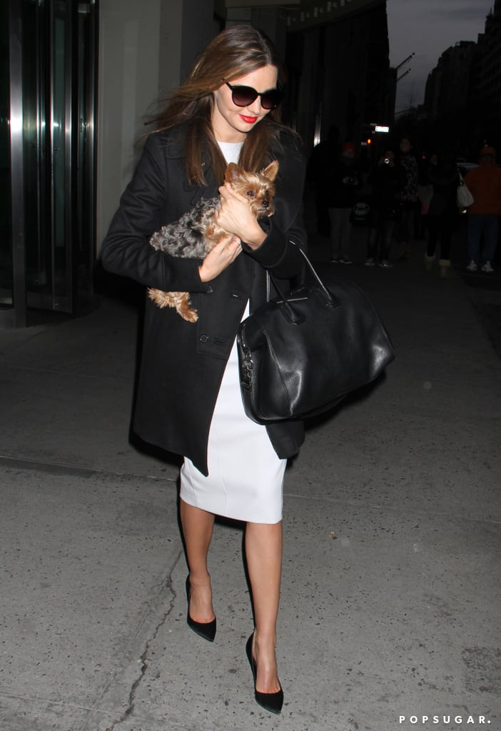 Miranda Kerr stepped out in NYC with her dog, Frankie.