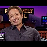 David Duchovny on Meeting Prince Charles