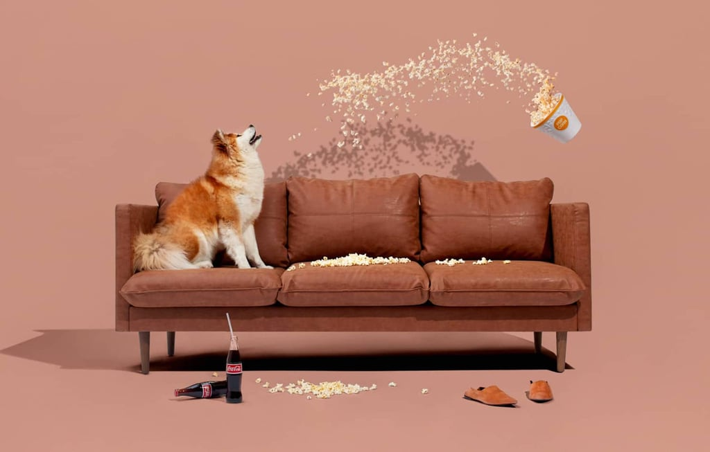 Best Direct-to-Consumer Sofa and Couch Brands 2021