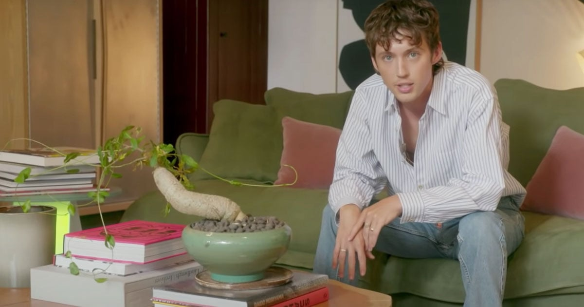 Troye Sivan's Melbourne Home Is Like a Modern Art Museum (Tranquil Courtyard Included)