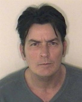 Brooke Mueller Sheen and Charlie Sheen's Statements About Charlie's Christmas Day Arrest are Released Plus the 911 Call