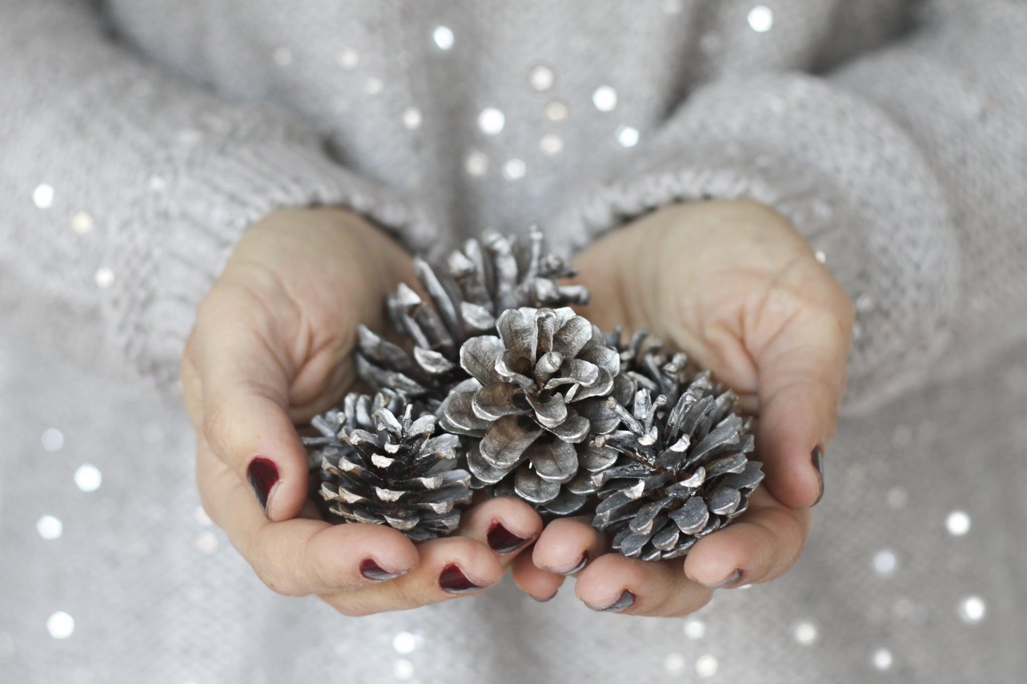 Woman holding pine cones