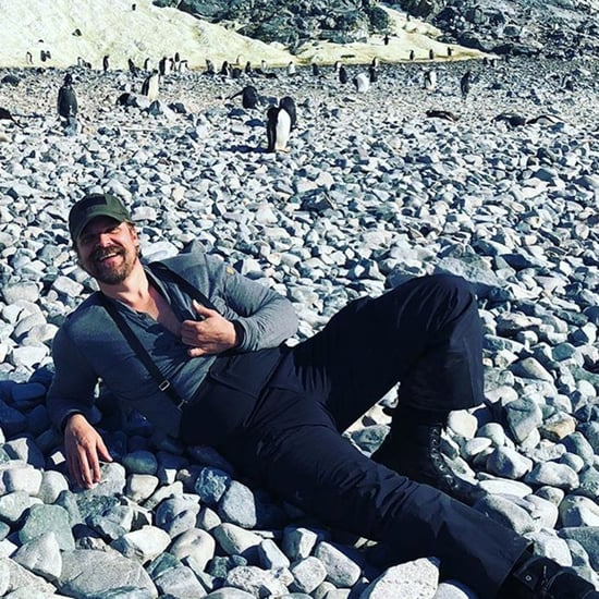 David Harbour Doing Hopper Dance With Penguins Video 2018