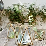 Glass candleholders are great because they look beautiful filled with soft flickering lights for a dinner party or succulents for a daytime gathering.