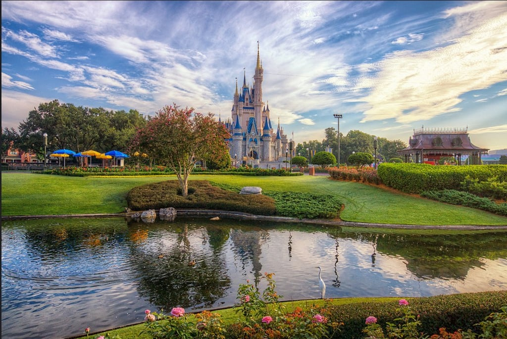 Things You Didn't Know Your Family Could Do at Disney World
