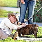 Ryan Gosling got affectionate with a bulldog on the set of The Gangster Squad.