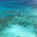 Waikiki's Beautiful Waterscape