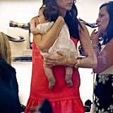 Victoria Beckham with Harper shopping.