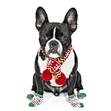 PetSmart Pet Holiday Knit Scarf