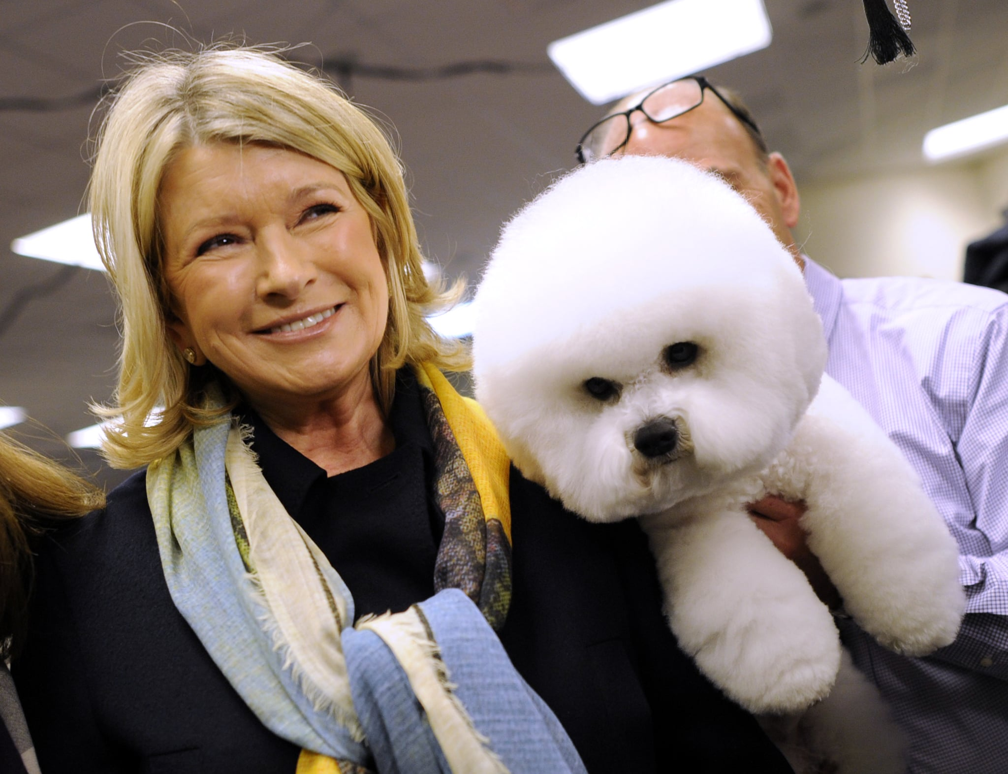 Martha Stewart stops to look at a Bichon Frises in the staging area during the 136th Westminster Kennel Club  Annual Dog Show held at Madison Square Garden. February 13, 2012.  AFP PHOTO / TIMOTHY A. CLARY (Photo credit should read TIMOTHY A. CLARY/AFP/Getty Images)