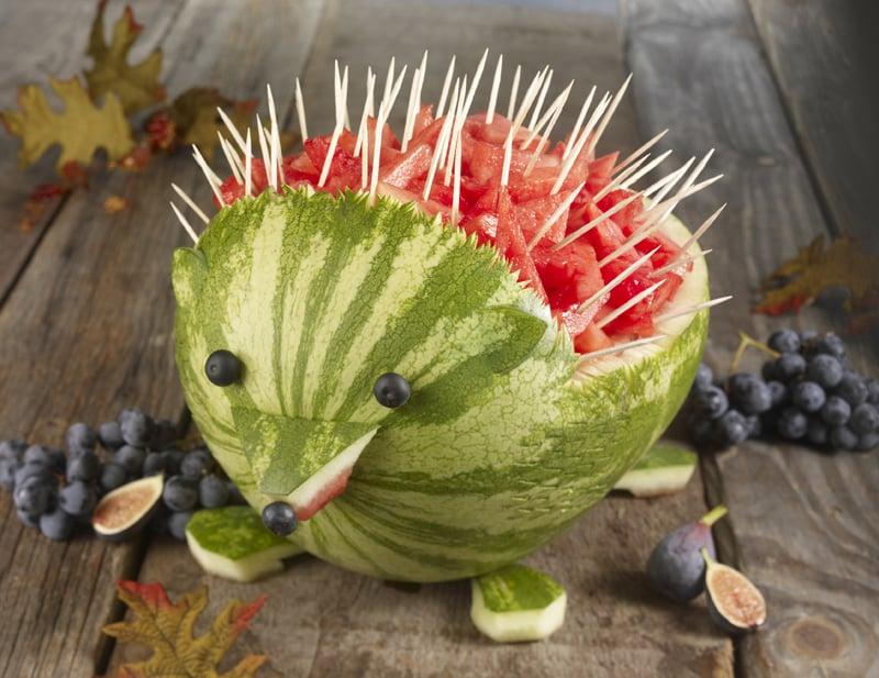 A Friendly Hedgehog
