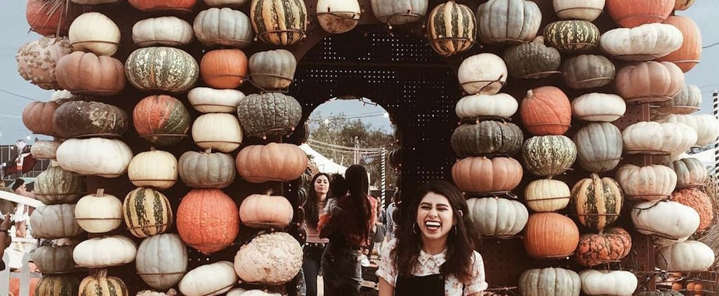 This Crazy Pumpkin Patch in California Is the Halloween Palace of Your Dreams