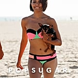 Kat Graham carried her dog on the beach.